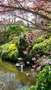 Hanami-Orto-Botanico-2
